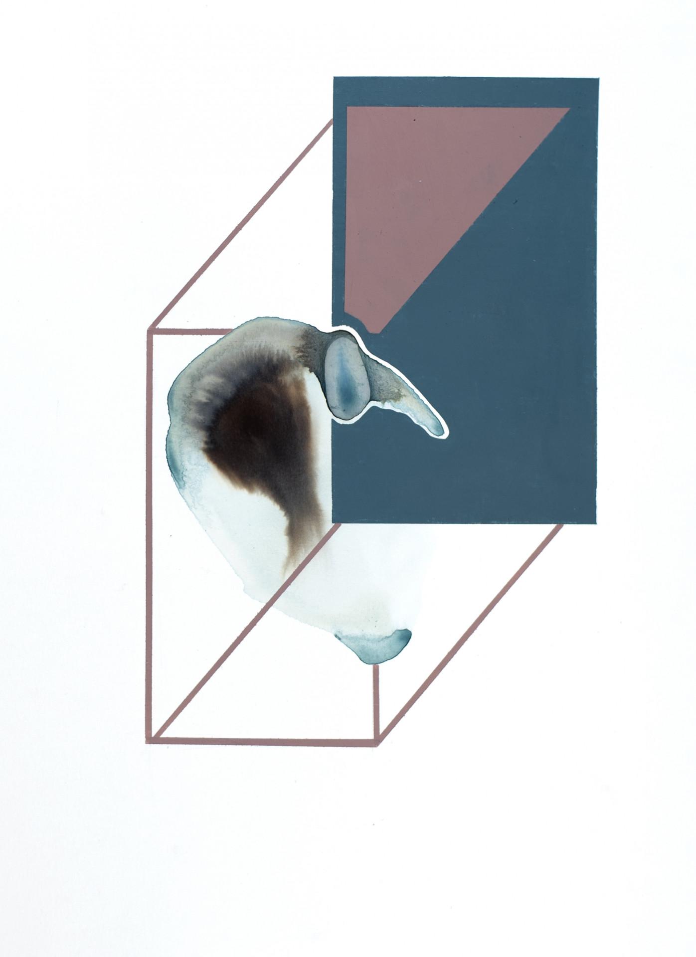 Axppereil / Genus Nro SE023